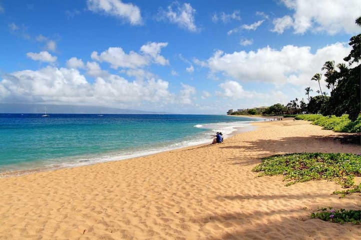 Maui Eldordo Ka'anapali Golf & Ocean Views #A110