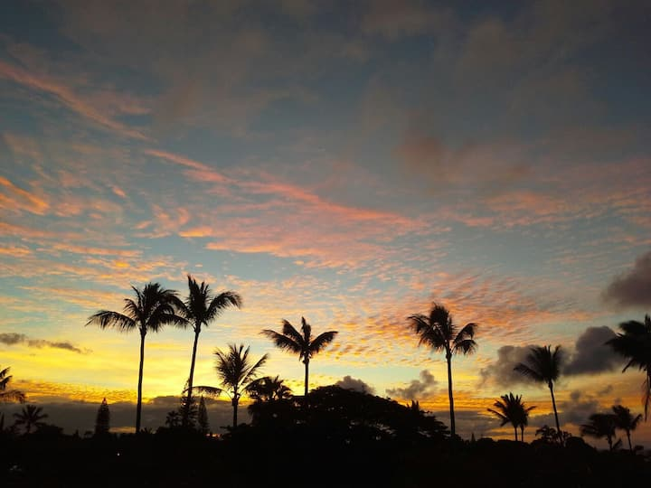 West Maui!!! Oceanview Studio. Walk to Napili Bay!