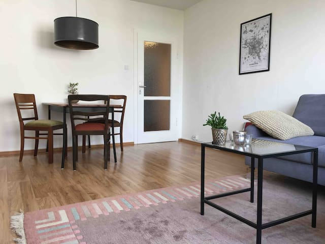 Schöne, individuelle Wohnung im Zentrum