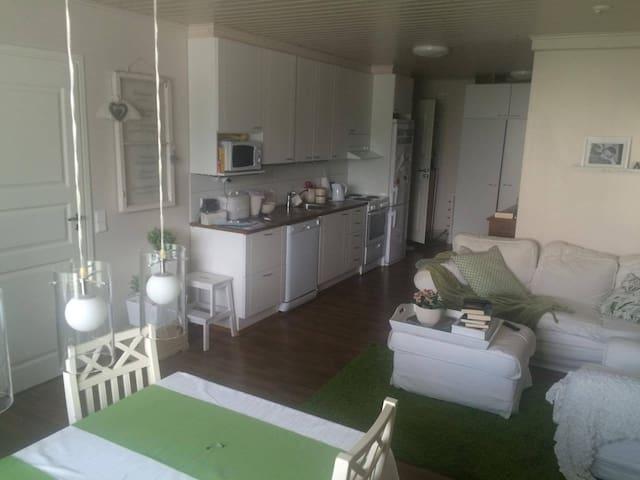 Kodikas asunto keskustassa / 3 BR Apartment - Pori - Appartement