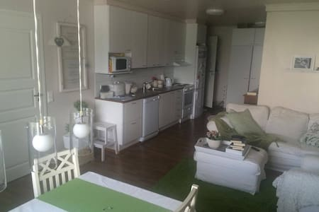 Kodikas asunto keskustassa / 3 BR Apartment - Pori