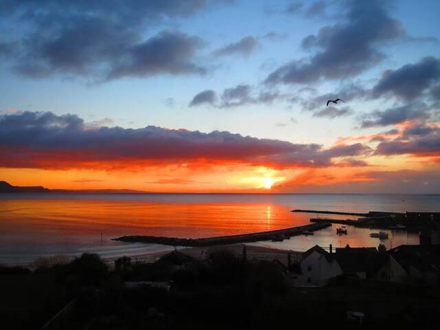 Best Views in Lyme Regis - Lyme Regis - House