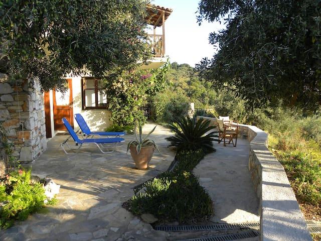 Illiolousti Thea Villa, TAXIARKIS - Skiathos - Villa