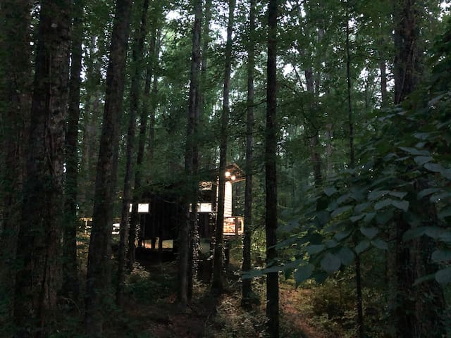 Modern Rustic Tiny Treehouse on Pond with Airport
