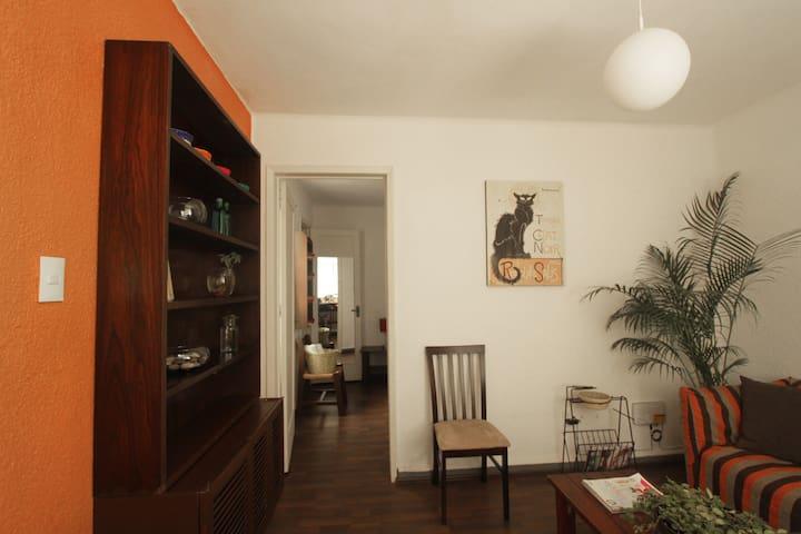 Cozy full apartment in city of México