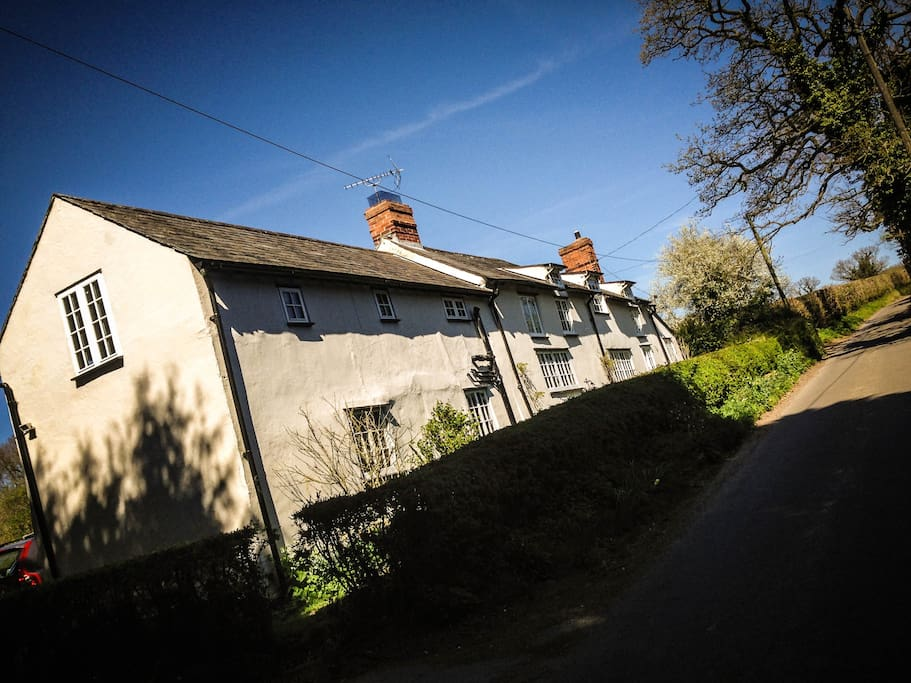 View from down the lane