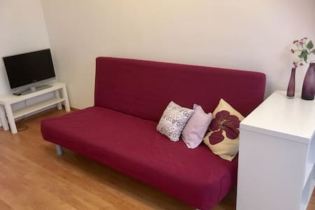 Nice flat 20min to airport, 25min to Prague center - Praag