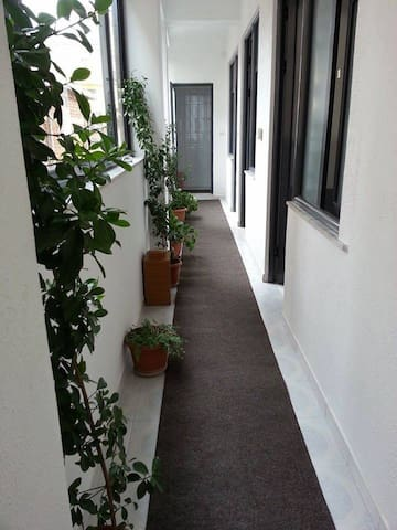 Private Rooms for renting - Pogradec - Lägenhet