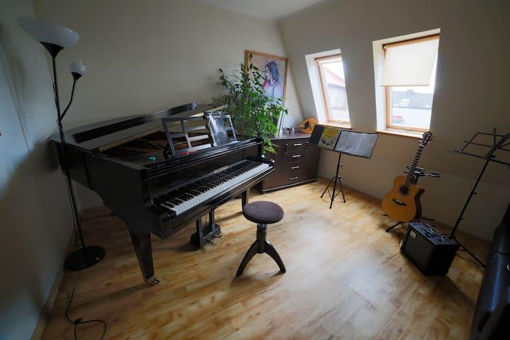 Muzyczny pokoik w Żywcu na osobnym piętrze - Żywiec - Hus