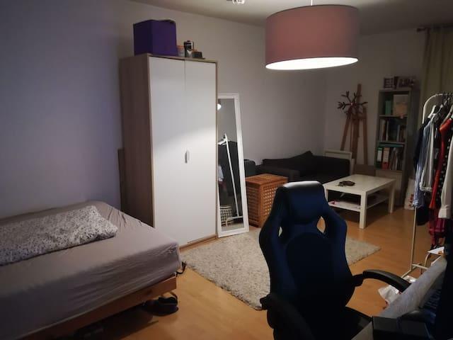 Cozy Apartment near University