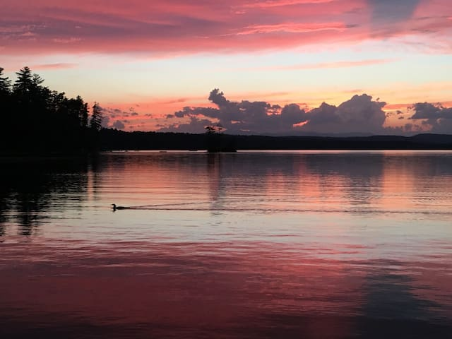 Incredible sunsets with occasional loon!