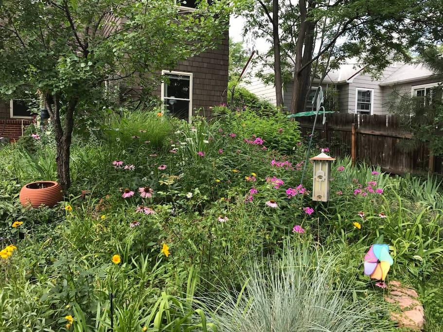Beautiful garden setting.