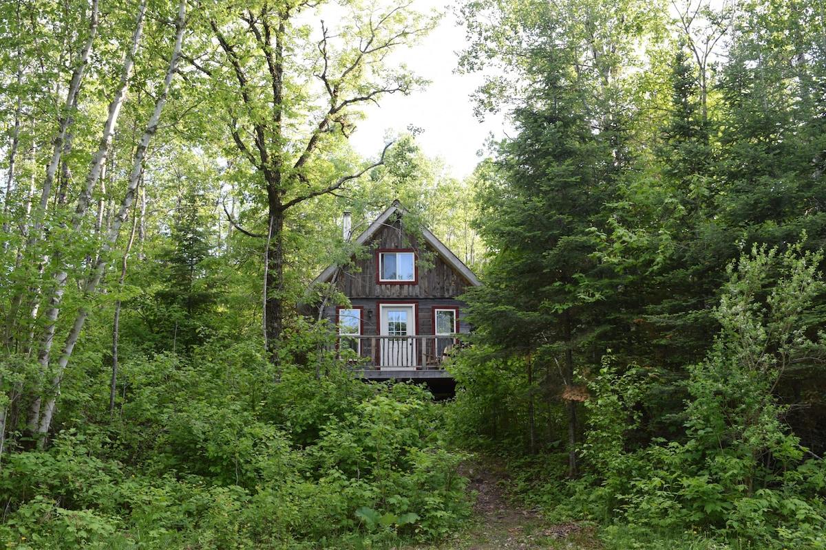 Lake of the Woods Ferienwohnungen & Unterkünfte   Ontario, Kanada ...