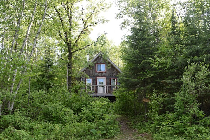 Nettle Cabin w/ Lake Access @ Wild Woods Hideaway