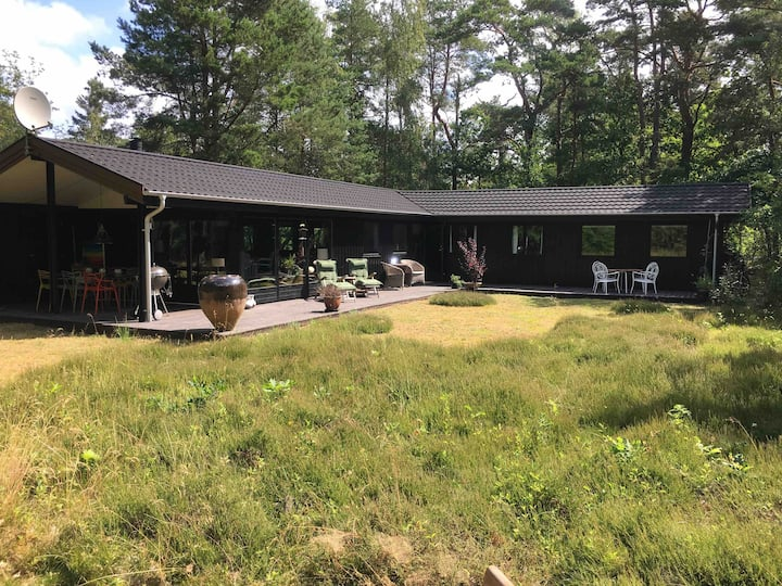 Exquisite gem in the woods with plenty of space