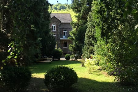 Charming winery villa in Trarbach