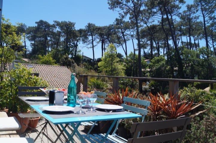 Appartement terrasse et cheminée au Cap Ferret