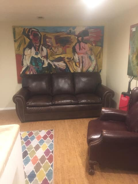 Large One Bedroom apartment, center location.