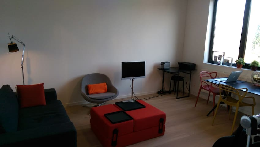 Cosy apartment close to the park - Antwerpen - Wohnung