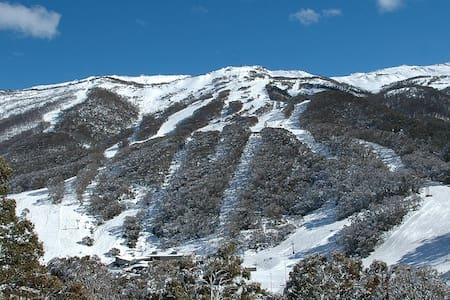 Wintergreen 3 @ Crackenback Ridge, Thredbo - Kosciuszko National Park - Appartement