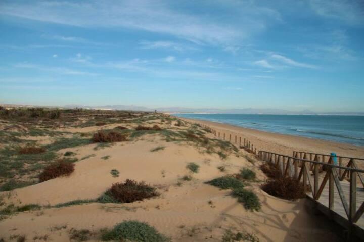 GUARDAMAR   Segunda Línea de Playa