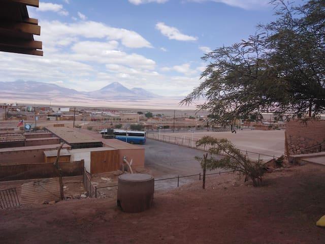 Atacama Roots Habitación compartida