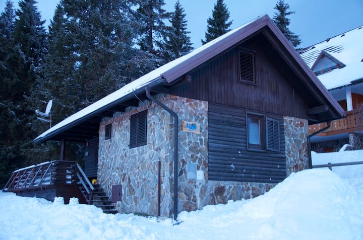 Charming Apartments on Rogla - Apartment Leon