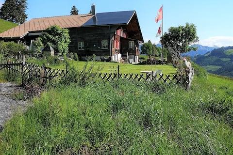 Ferienwohnung ''ALPENLUFT'' in Zweisimmen,NaturPUR