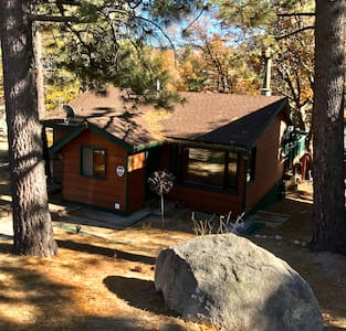Cozy Cabin In Woods! Jacuzzi Tub, Patio BBQ & More