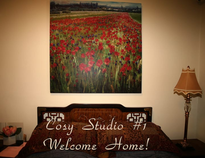 Cozy studio in NJ , 30 min form NYC attractions