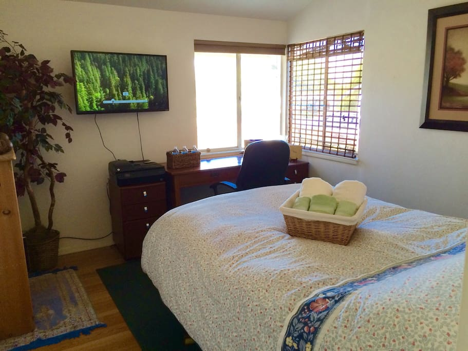 Plush queen pillow top bed, Smart TV, desk, and lots of light.