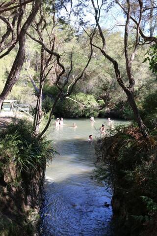 Hot & cold swimming stream Waiotapu