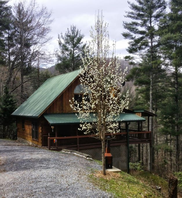 3 bedroom 2 5 bath cabin rental cabins for rent in blue for 8 bedroom cabins in blue ridge ga