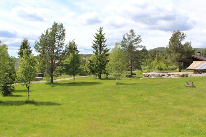 Lifjell mountain cabin no 13 Gol Hallingdal