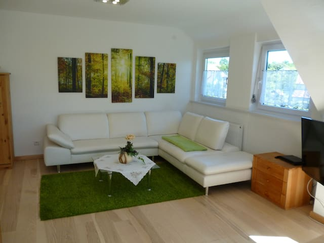 Quite place in the Black Forest for 6 People - Freudenstadt - Daire