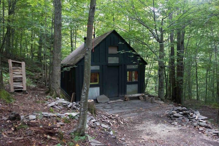 Writer's Cabin in the Woods - Walton