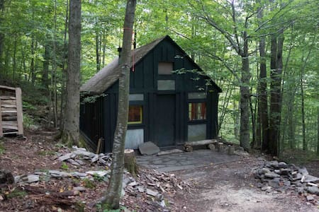 Writer's Cabin in the Woods - Walton - Cabin