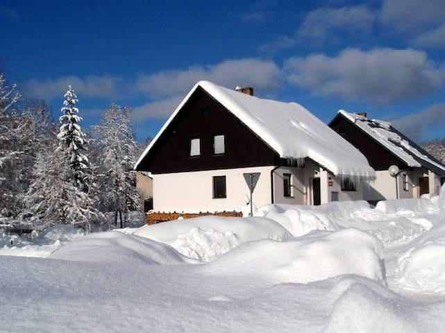 Patro domu /Private floor of house - Deštné v Orlických horách - Loft
