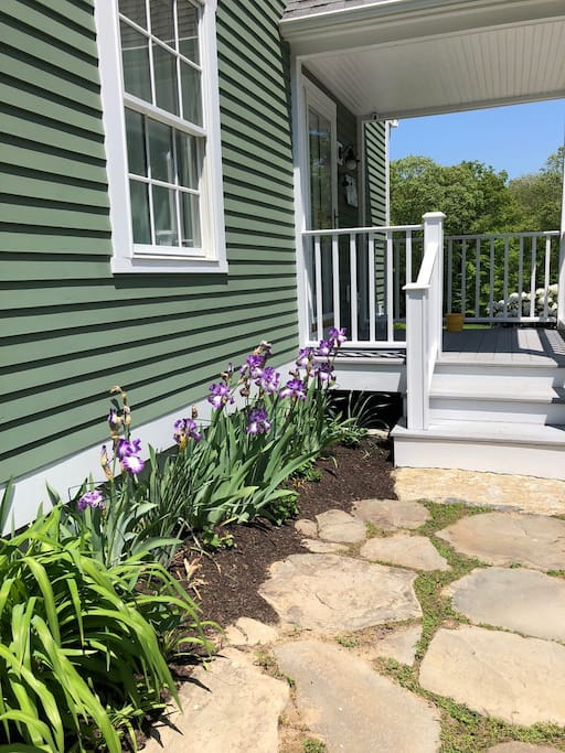 Side door & Irises in spring