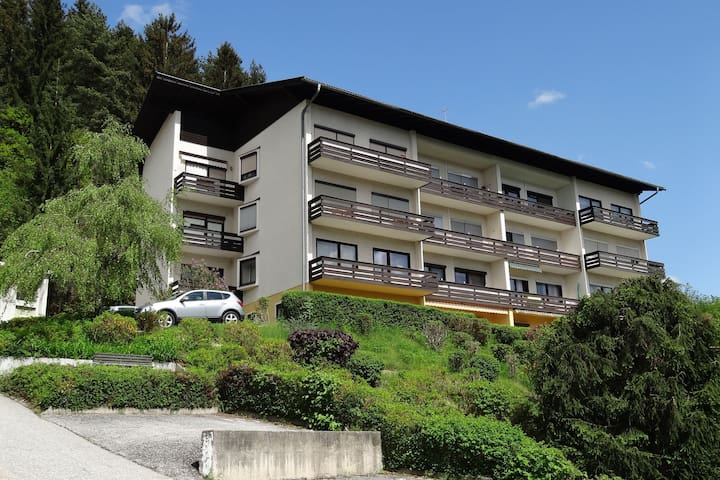 Apartment on the Milstättersee with swimming pool in the summer