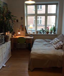 Cosy room in midtown Aarhus