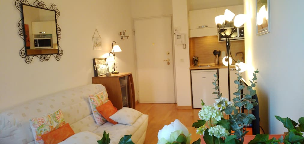 Lovely charming 1 bedroom flat Nice's heart