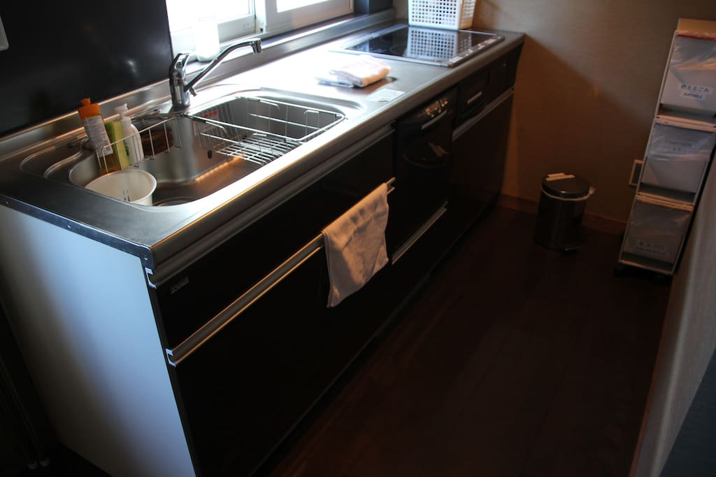 Dishwasher in the kitchen - ディッシュウォッシャー付きキッチン