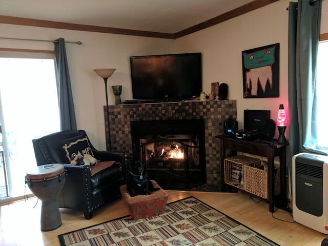 HDTV with streaming, Vinyl Record/CD  Player,  lots of music and movies... pugs not included!