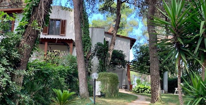 Villa Mediterranea - For families