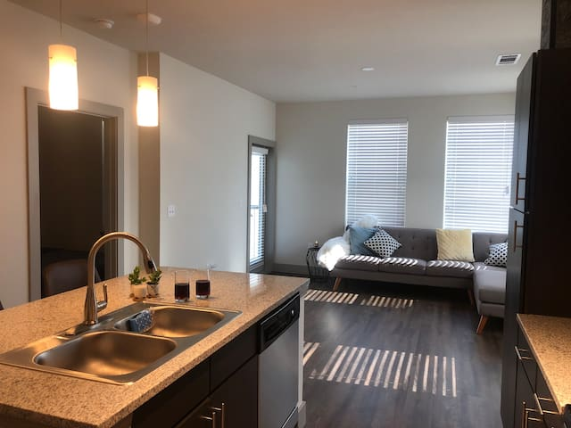 Newly Furnished Apt Near Downtown Fort Worth