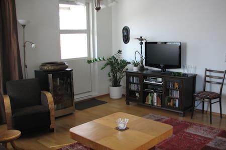 Cozy apartmet - 2 bedrooms & sauna - Hämeenlinna - Apartamento