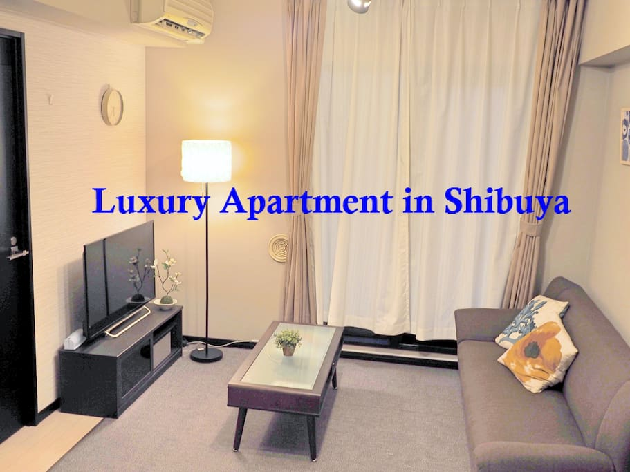Quiet luxury apartment shibuya city view b01 for Living room of satoshi