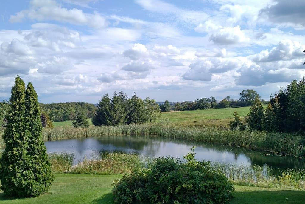 Large Freshwater Pond
