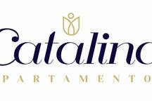 Catalina's loft No. 1